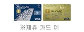 ※제휴 카드 예